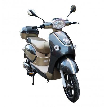 Bici Elettrica e-City